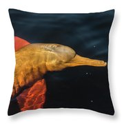 A Graceful Turn Throw Pillow