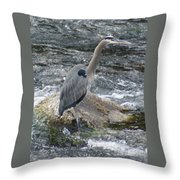 A Great Blue Heron At The Spokane River 3 Throw Pillow