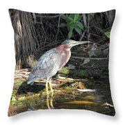 A Greenie With Reflection Throw Pillow