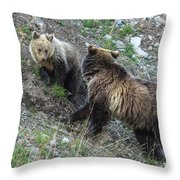 A Grizzly Moment Throw Pillow