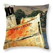 A-ground At Point Reyes Throw Pillow