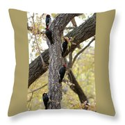 A Group Of Acorn Woodpeckers In A Tree Throw Pillow