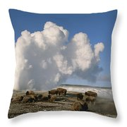 A Group Of American Bison Rest Throw Pillow