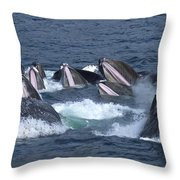 A Group Of Humpback Whales Bubble Net Throw Pillow