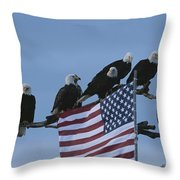 A Group Of Northern American Bald Throw Pillow