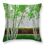 A Grove Of Birches 2 Throw Pillow