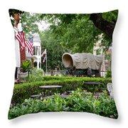A Gruene View Throw Pillow