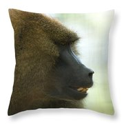 A Guinea Baboon At The Lincoln Throw Pillow