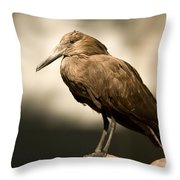 A Hammerkop At The Lincoln Childrens Throw Pillow