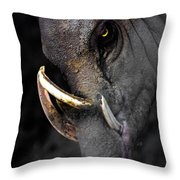 A Handsome Chap Throw Pillow
