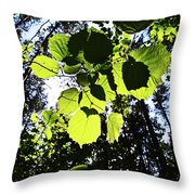 A Happy Hour Throw Pillow