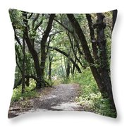 A Happy Trail Throw Pillow