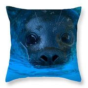 A Harbor Seal At The Lincoln Childrens Throw Pillow