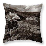 A Hard Existence - Sepia Throw Pillow