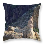 A Hard Ride Throw Pillow