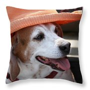 A Hat For Buddy Throw Pillow
