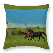 A Hawk And Horses In Kansas Throw Pillow