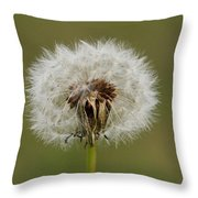 A Head Full Of Wishes Throw Pillow