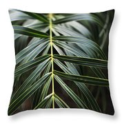 A Heart Begins In Nature Throw Pillow