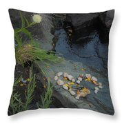 A Heart By The River Throw Pillow