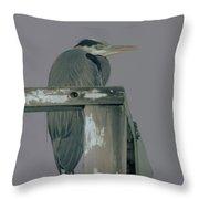 A Heron On Watch  Throw Pillow