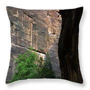 A Hiker Walks Among The Narrow Throw Pillow