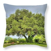 A Hill Country Moment Throw Pillow