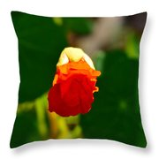 A Hint 2 Throw Pillow