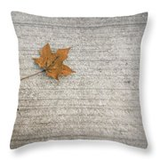 A Hint Of Autumn Throw Pillow