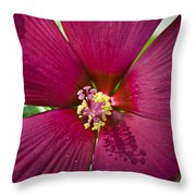 A Hole In One Throw Pillow