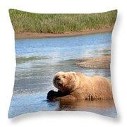 A Hot Day In The Hallo Bay Katmai National Park Preserve Throw Pillow