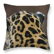 A Jaguar At Omahas Henry Doorly Zoo Throw Pillow