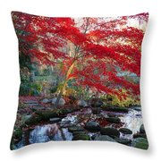 A Japanese Maple With Colorful, Red Throw Pillow