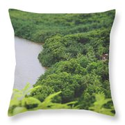 A Jungle Story Throw Pillow