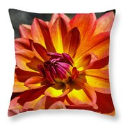 A Kiss Of Purple Throw Pillow