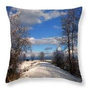 A Kootenai Wildlife Refuge Winter Throw Pillow