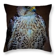 A Lady Of Distinction Throw Pillow