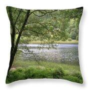 A Lake Near Glendalough Throw Pillow
