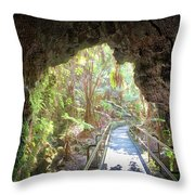 A Last Look Back Throw Pillow