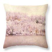 A Late Winter Xiv Throw Pillow