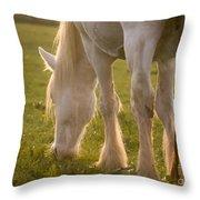 A Lazy Supper Throw Pillow