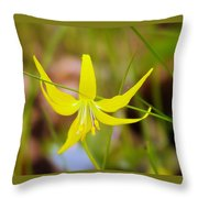 A Lilly In Bloom  Throw Pillow