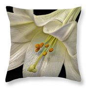 A Lily For Easter Throw Pillow