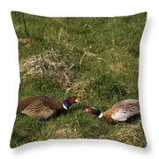 A Little Argue Throw Pillow