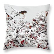 A Little Bird So Cheerfully Sings Throw Pillow