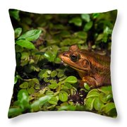 A Little Bronze Throw Pillow