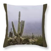 A Little Desert Fog  Throw Pillow