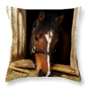 A Little Nibble Throw Pillow