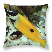 A Little Sunshine In The Water Throw Pillow