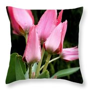 A Little Sunshine Please Throw Pillow